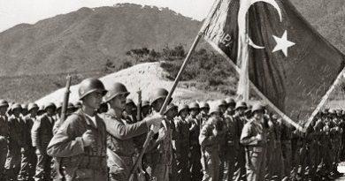 Kore Savaşı, Türk askerleri